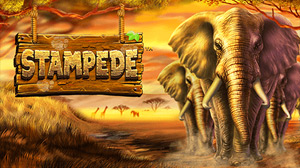 Stampede slot game at MyBookie